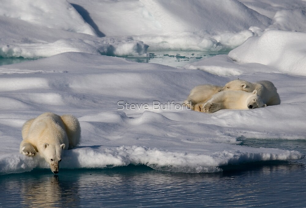 Chill Out and Relax by Steve Bulford