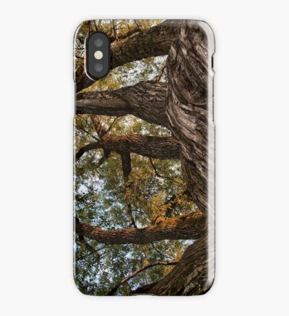 REACHING THE SKY [iPhone-kuoret/cases] iPhone Case