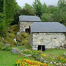 Arcizan - Water Mills  (Pyrenees France) by 29Breizh33