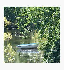 Wind in the Willows Photographic Print
