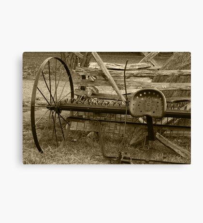 In Its Hay Days II Canvas Print