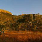 Tabletop - Peak Downs - North Queensland by Paul Gilbert