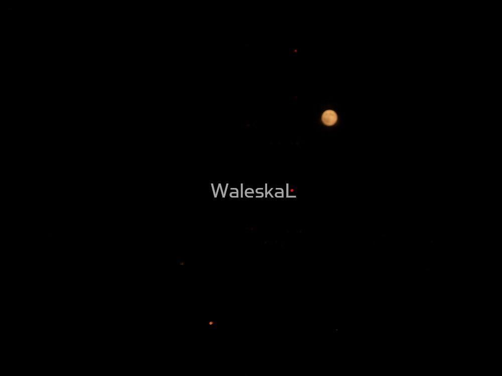 Moon over my Balcony by WaleskaL