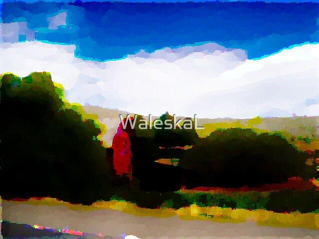 Barn Art by WaleskaL