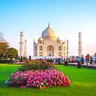 Taj Mahal - After Sunrise by Neha  Gupta