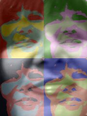 Warhol Jo by wildflowerjo