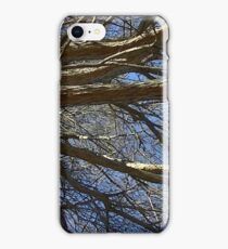 Windy Day - The Blue & The Green 017 iPhone Case/Skin