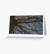 Windy Day - The Blue & The Green 017 Greeting Card