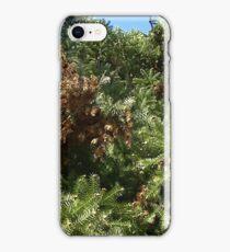 Windy Day - The Blue & The Green 019 iPhone Case/Skin