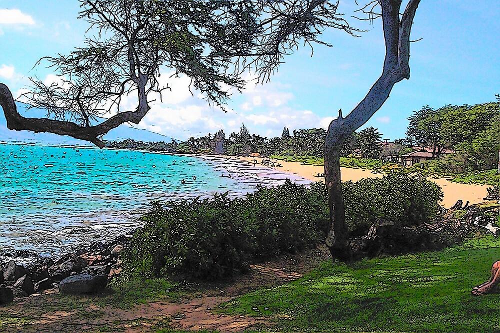 South Maui Beach by Kamalanirose
