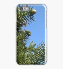 Windy Day - The Blue & The Green 022 iPhone Case/Skin