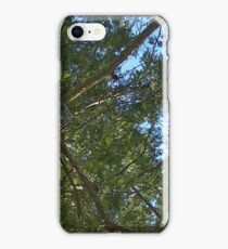 Windy Day - The Blue & The Green 027 iPhone Case/Skin