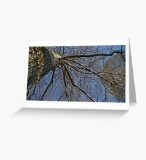 Windy Day - The Blue & The Green 037 Greeting Card