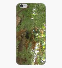 Windy Day - The Blue & The Green 040 iPhone Case