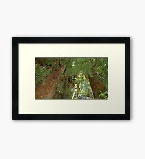 Windy Day - The Blue & The Green 040 Framed Print