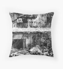 Nobody Home Throw Pillow