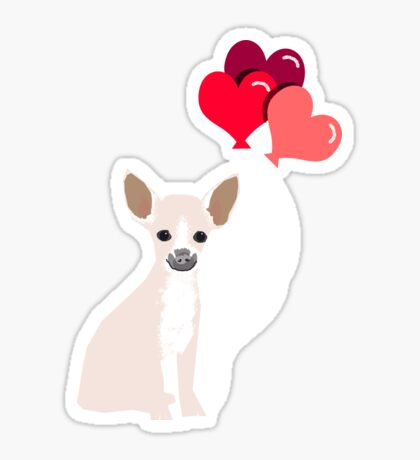 Chihuahua love hearts valentines day cute gifts for chiwawa lovers pet must haves Sticker