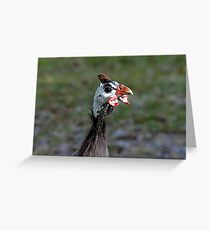 Ugly Bird Greeting Card