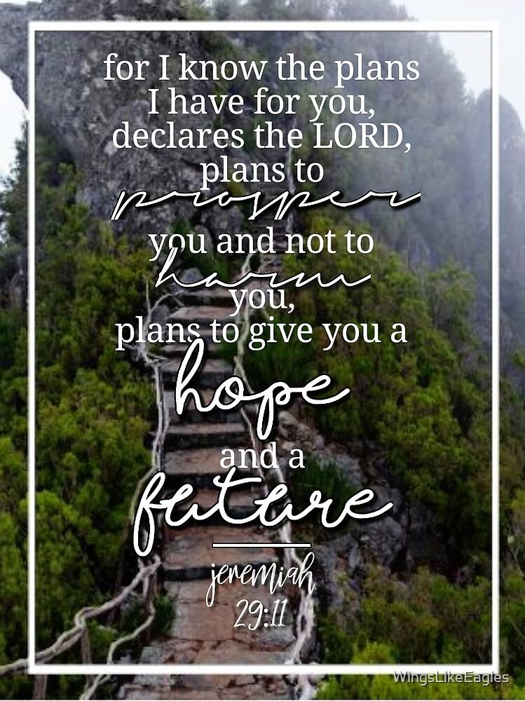 Jeremiah 29:11 by WingsLikeEagles