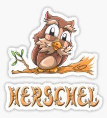 Herschel Owl Sticker