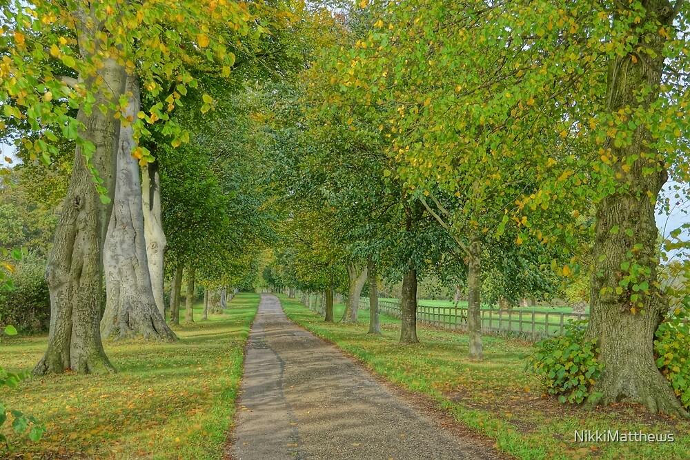 The long walk by NikkiMatthews