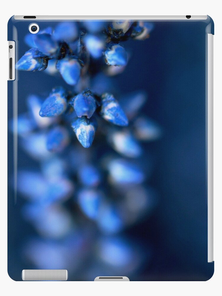 Blue Flower by MillsCreations
