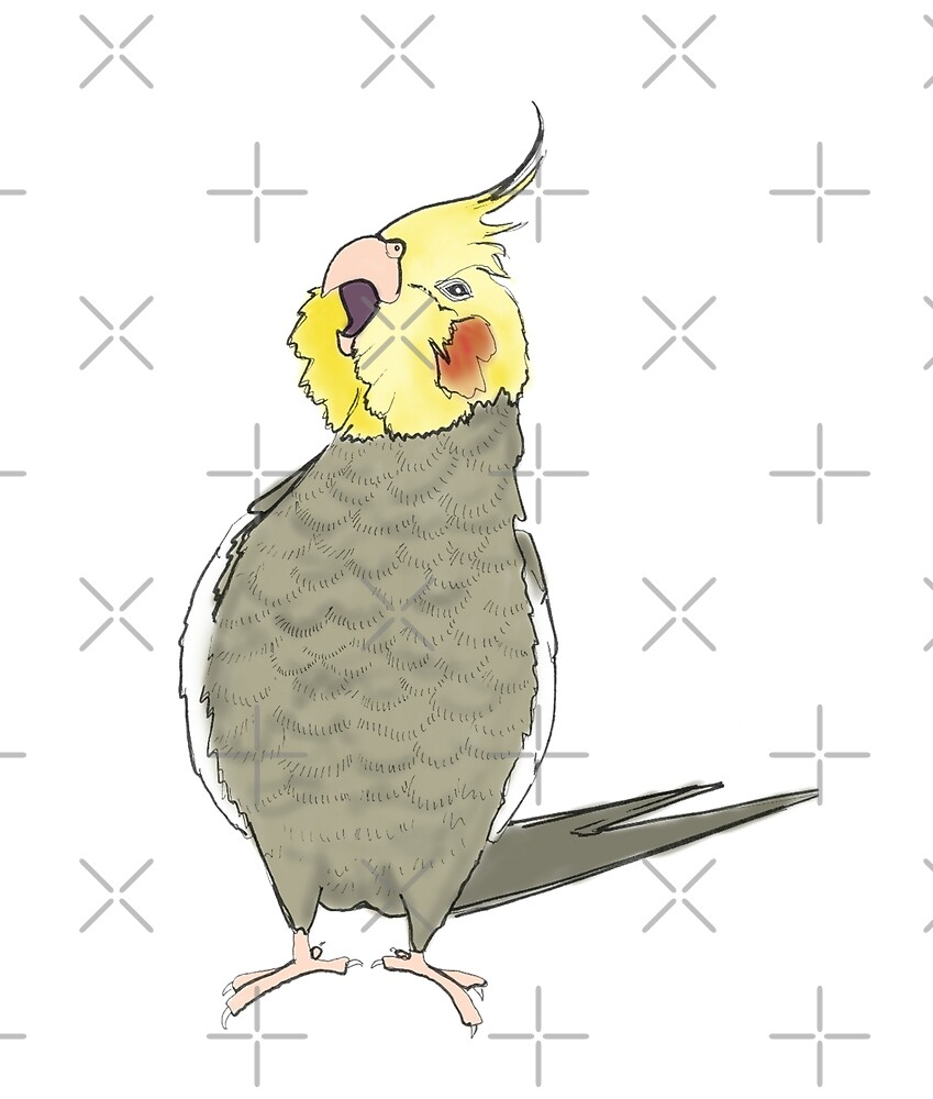Screaming Cockatiel by VivianRosalee