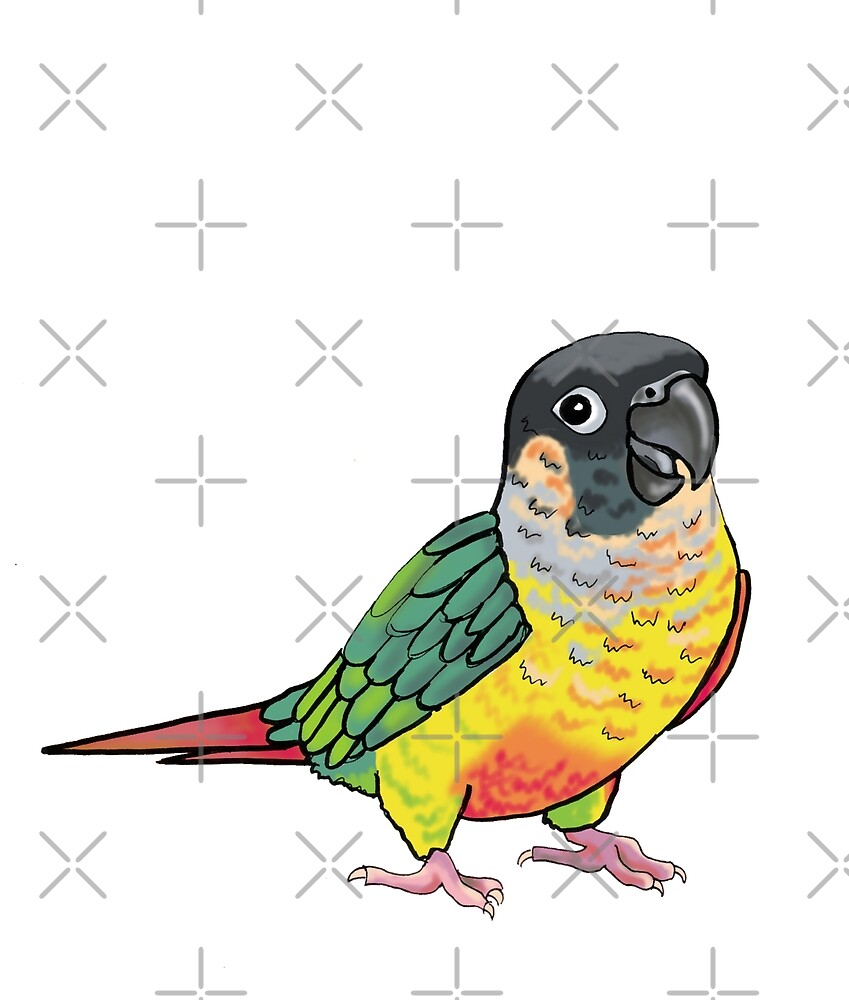 Screaming Yellow-sided Conure by VivianRosalee