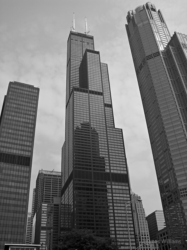Chicago Skyscrapers by Jaymes Williams