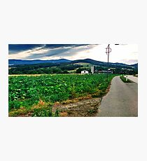 Countryside in Austria Photographic Print