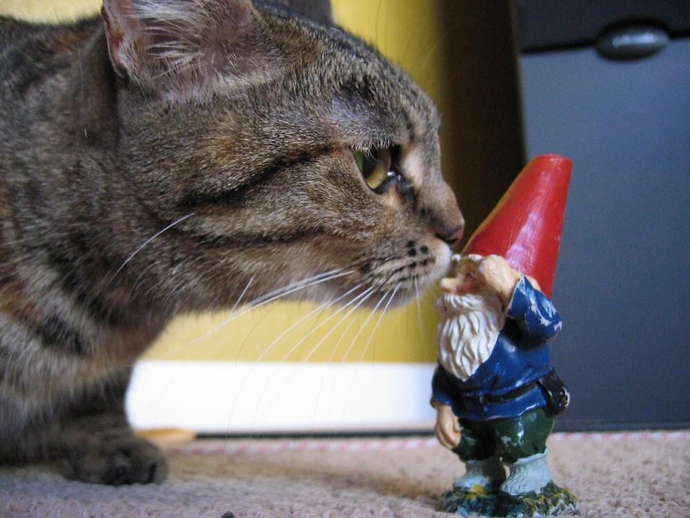 Kitty cat sniffs gnome by johncarleton