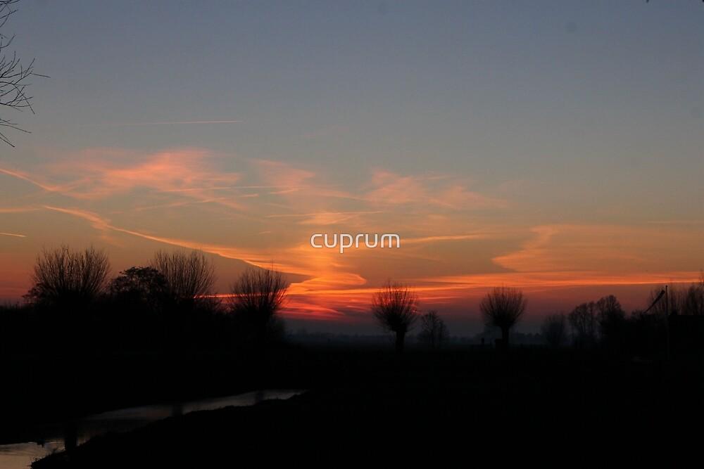 An Artists Sunset by cuprum