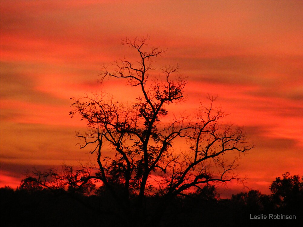 Sunset in Auburn by Leslie Robinson