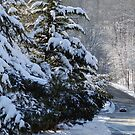 A wintry drive in Pike Creek by nastruck
