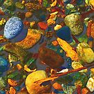 Stones on the Shore I by Mike Solomonson