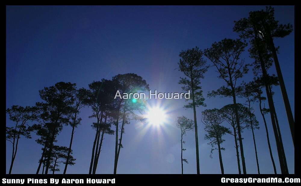 Sunny Pines by GreasyGrandma