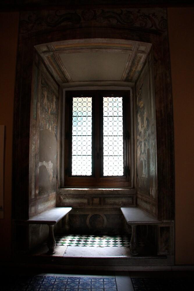 Vatican window by stjc