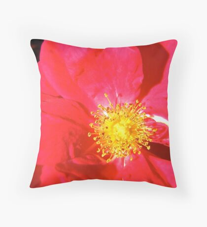 Governor General's Roses14 Throw Pillow