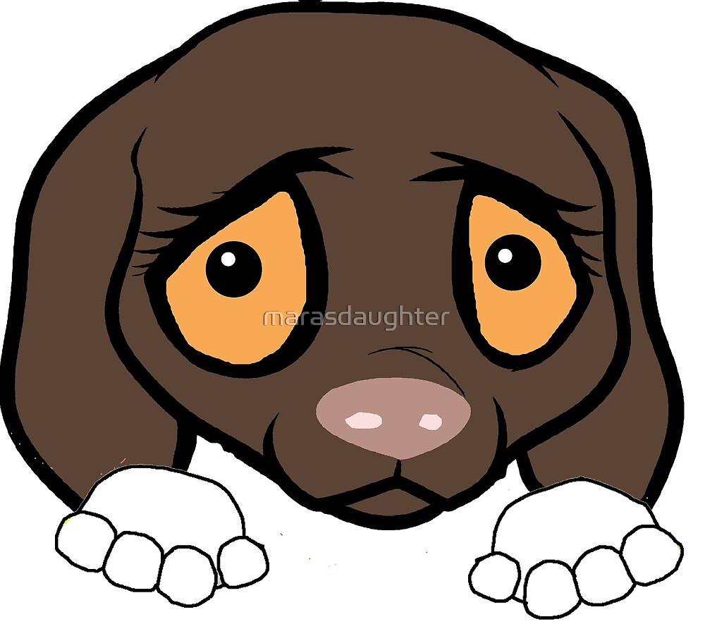 german shorthaire pointer liver and white peeking cartoon by marasdaughter