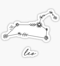 Leo Zodiac Wildflower Constellation Sticker