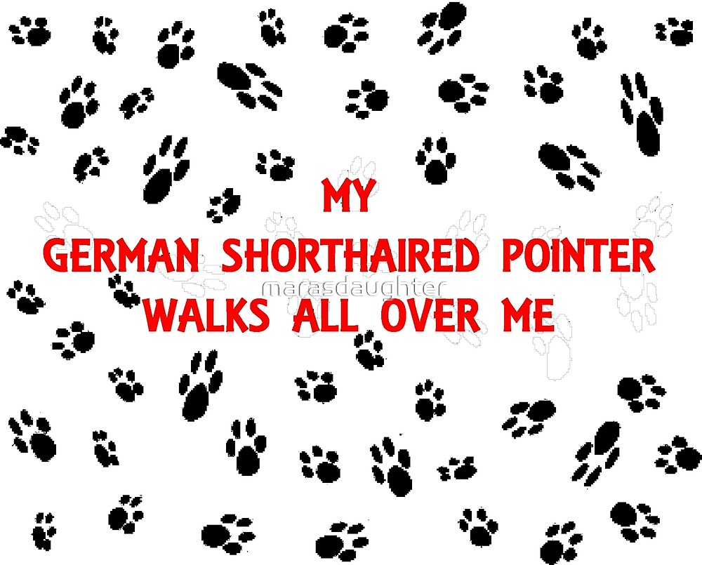 my german shorthaired pointer walks all over me by marasdaughter