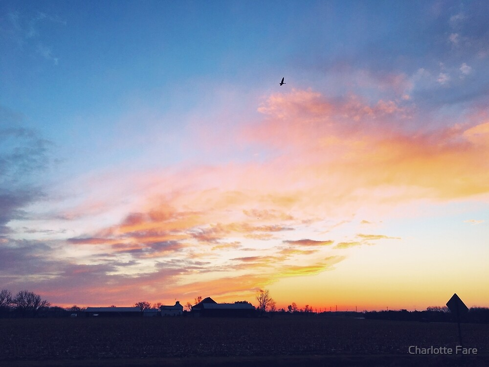 Rural Sunset by Charlotte Fare