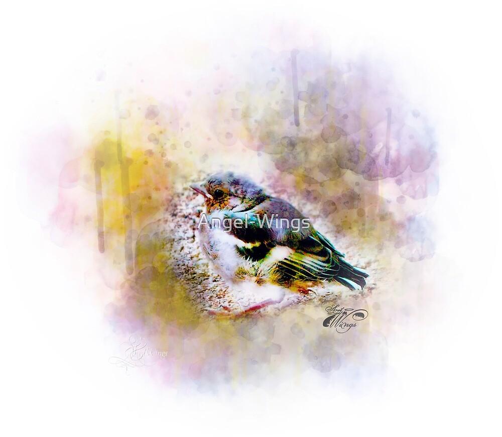 Bird by Angel-Wings
