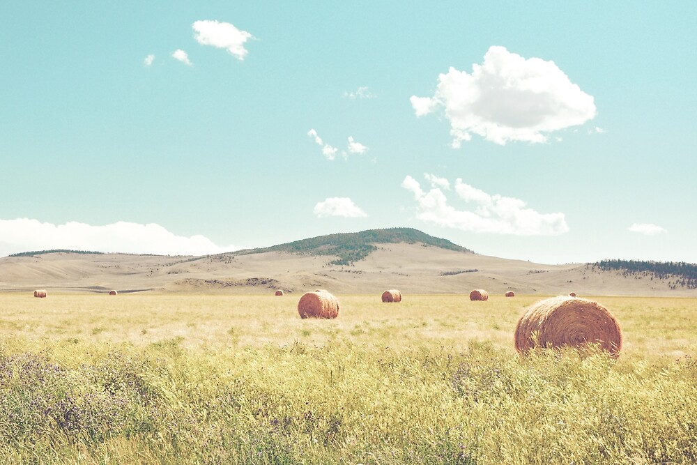 A Day in the Fields by ABaileyPhoto