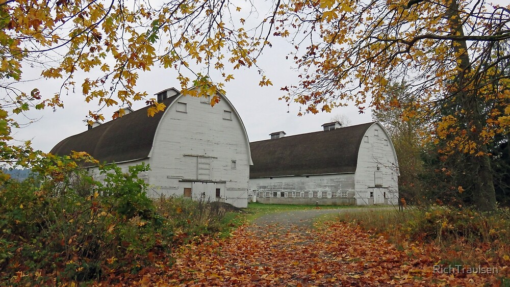 Two White Barns in Autumn by RichTraulsen