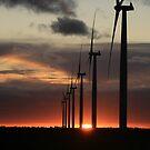 Wind Farms by Dene Wessling