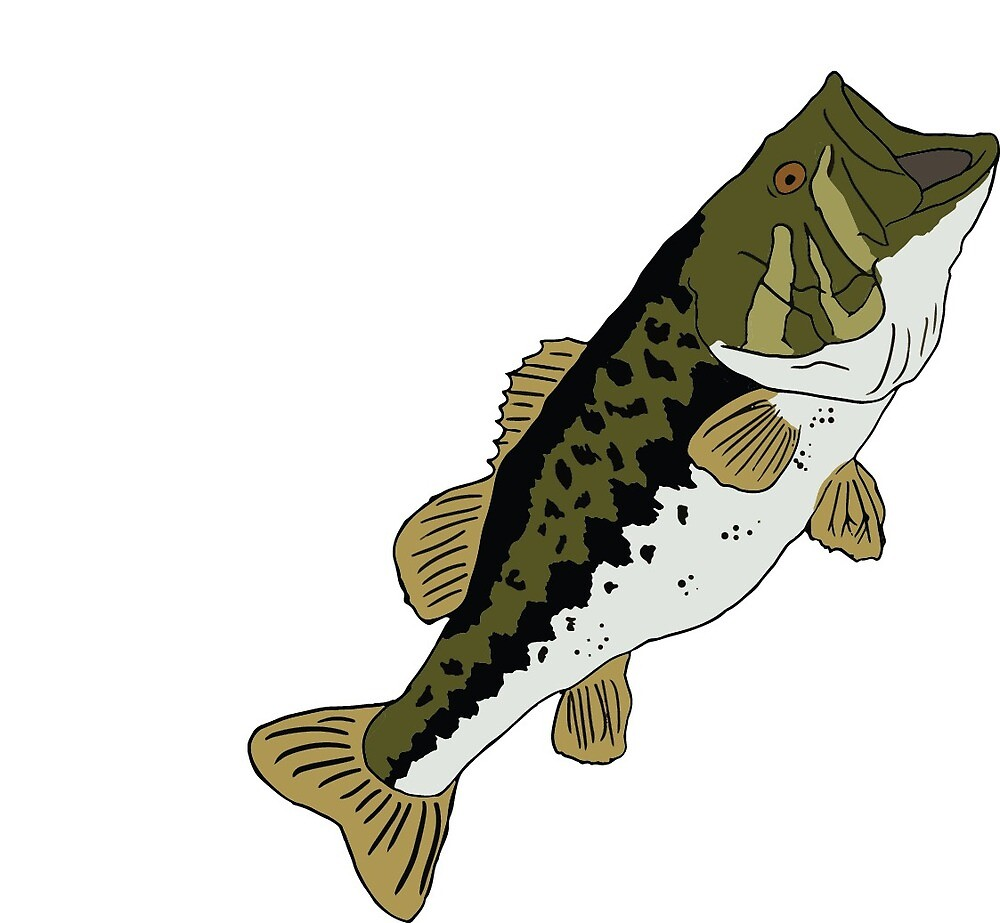 Largemouth Bass by AnthonyRogalny