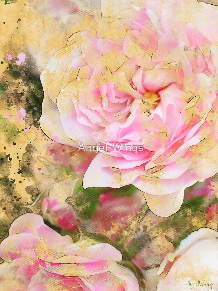 Pink Roses by Angel-Wings