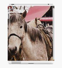 Himalyan Horse iPad Case/Skin