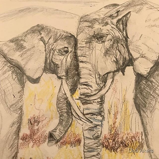 Elephant Friends by Deb Akers